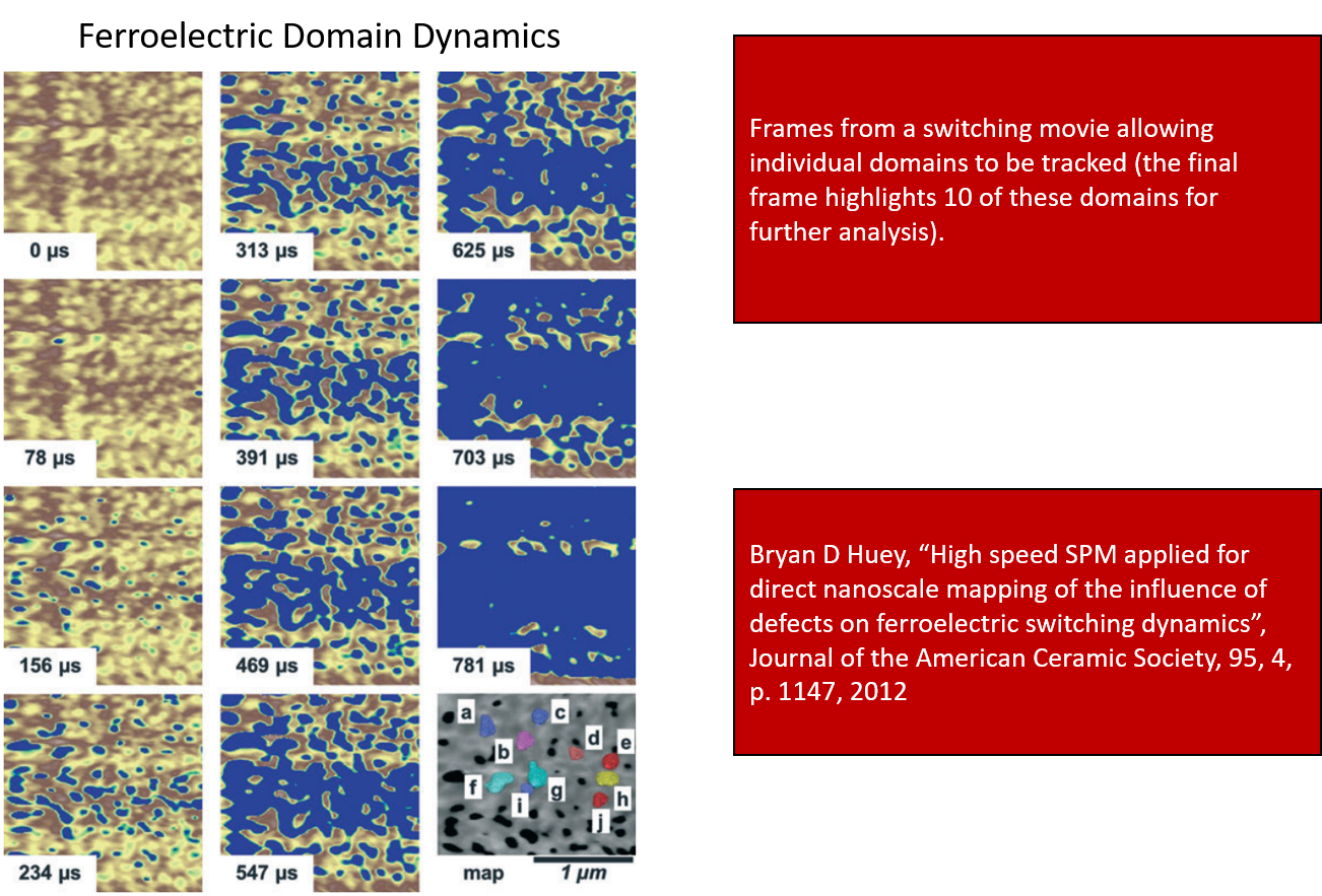 Ferroelectric Domain Dynamics